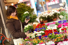 Beautiful young girl selecting flowers Stock Photo