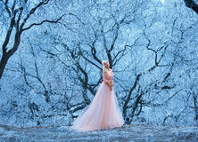 Beautiful young girl stands one among snowy trees. Fabulous winter woods with beautiful patterns of snow-covered branches of trees.Luxurious blonde with long Royalty Free Stock Images