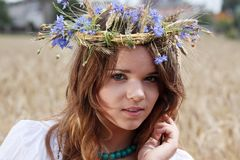 Beautiful young girl in summer field Stock Images