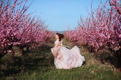 Beautiful young girl under the flowering pink tree royalty free stock photos