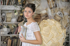 Beautiful young girl in a vintage dress. Beautiful young girl in a vintage dress with wings on her  back Stock Photos