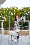 Beautiful young girl walking with dog outdoors. Pet concept. Cute little girl with doggie walking on the street. Posing at camera on the nature background. Full Stock Photo