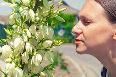 A beautiful and young girl, walking down the street, sniffs a beautiful Yucca flower and enjoys the aromatic smell of the plant.  stock image