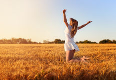 Beautiful young girl in white dress jumping in golden wheat. Beautiful young girl in white dress jumping in  wheat field Stock Photos