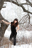 Beautiful young girl in winter forest. Near a tree Royalty Free Stock Images