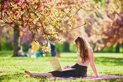 Free Beautiful Young Girl Working On Her Laptop In Park During Cherry Blossom Season Stock Photography - 217214752