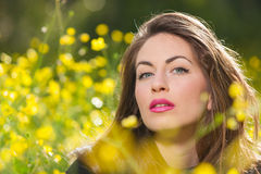 Beautiful young girl among yellow flowers Royalty Free Stock Photography