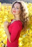 Beautiful young girl in yellow grape vineyard Stock Images