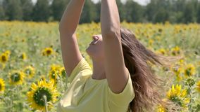 Beautiful young girl posing standing in a field with sunflowers. slow motion stock video footage