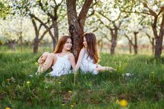 Beautiful Young Girls In White Dresses In The Garden With Apple Trees Blosoming At The Sunset. Two Friends Hugging Stock Images