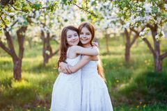 Beautiful Young Girls In White Dresses In The Garden With Apple Trees Blosoming At The Sunset. Two Friends Hugging Royalty Free Stock Photos