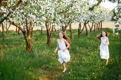 Beautiful young girls in white dresses in the garden with apple trees blosoming at the sunset. two friends hugging royalty free stock photography