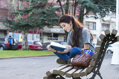 Beautiful young happiness girl sitting on bench and reading book Stock Image