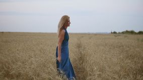 Beautiful young happy girl running through wheat field. Freedom concept. Turning around and looking to the camera. Beautiful young happy girl running through stock video