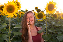 Beautiful young happy girl talking on the phone sunflowers Stock Photography