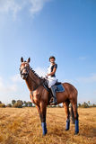 Beautiful young horsewoman sitting on a horse. Royalty Free Stock Image