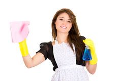 Beautiful young housewife cleaning Royalty Free Stock Image