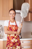 Beautiful young housewife cleaning the kitchen. Stock Image