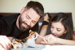 Beautiful young inlove couple on the bed playing with a kitten Stock Photos