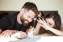 Beautiful young inlove couple on the bed playing with a kitten Stock Photography