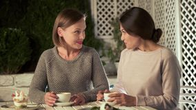 Free Beautiful Young Ladies Talking In Cafe, Female Friends Spending Time Together Royalty Free Stock Photo - 142887215