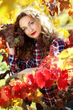 Beautiful young lady in autumn grape vineyard Royalty Free Stock Photography