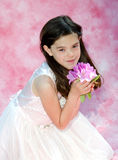 Beautiful young lady with flowers Royalty Free Stock Photos