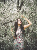Beautiful young lady in the garden of cherry blossoms Stock Photography