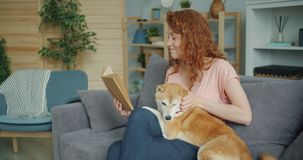 Beautiful young lady reading book and stroking adorable dog on sofa in house stock video footage
