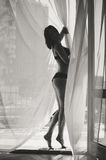 Beautiful young lady's silhouette in lingerie Royalty Free Stock Images