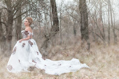 Beautiful young ladyite dress in the forest, professional makeup Royalty Free Stock Photos