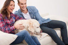 Beautiful young married couple with cute puppy Royalty Free Stock Photos