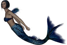 Beautiful young mermaid Royalty Free Stock Photos