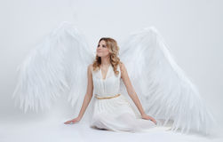 Beautiful young model with big angel wings sitting in the studio Stock Images