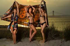 Beautiful young models wearing bikinis posing at sunset beach. Royalty Free Stock Photography