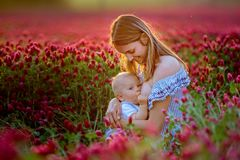 Beautiful young mother, breastfeeding her toddler baby boy in go stock photos