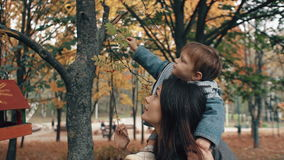Beautiful young mother holds on the shoulders a cute little son, boy plucks red berries from a tree in autumn park 4k. Beautiful young mother holds on the stock footage