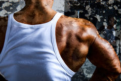 A beautiful young muscular man's shoulder. Stock Images