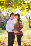Beautiful Young Pregnant Couple Having Picnic in autumn Park. Ha Stock Photos