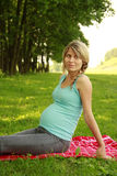 Beautiful young pregnant girl on nature Stock Images