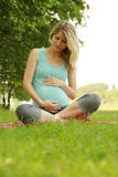 Beautiful young pregnant girl on the nature Stock Images