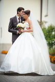 Beautiful young pretty elegant wedding couple Royalty Free Stock Photos