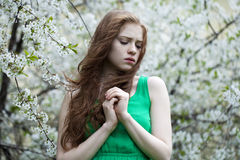 Beautiful young red hair woman Stock Photos