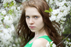 Beautiful young red hair woman Royalty Free Stock Photos