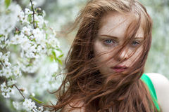 Beautiful young red hair woman Royalty Free Stock Images