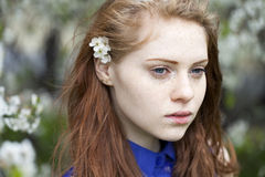 Beautiful young red hair woman Royalty Free Stock Image