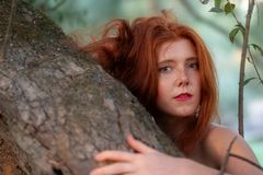 Beautiful young red-haired girl nicely smiling while hugging a gray tree trunk. With leaves royalty free stock photo