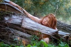 Beautiful young red-haired woman hugs smiling at a fallen gray tree trunk and strokes it sensually. Beautiful young red-haired woman hugs smiling friendly at a stock photos