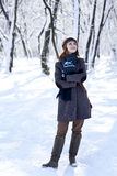 Beautiful young red-haired woman in winter park Stock Image