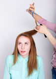 Beautiful young redhaired model in salon, hairdresser does a hairstyle. trims the hair tips with scissors.  royalty free stock photography